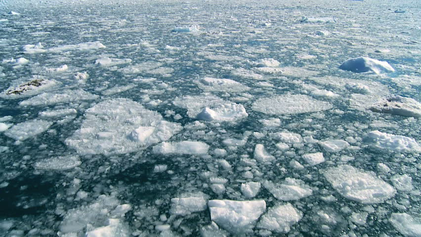 Drifting Arctic Ice Floes | Shutterstock HD Video #1640722