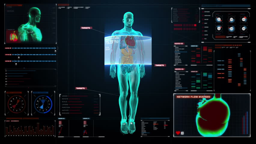 Human skeletal and blood vascular system inside scanning Human body in digital medical display. user interface.