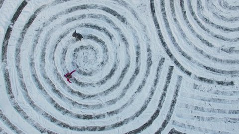 Four people slide on skates by tracks in form of spirals on ice at winter day. Aerial view