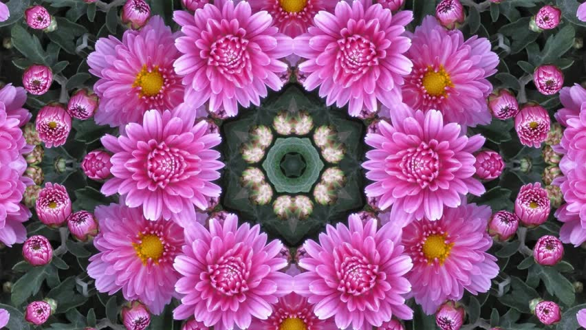 Kaleidoscope Flower Stock Footage Video (100% Royalty,free) 16737895