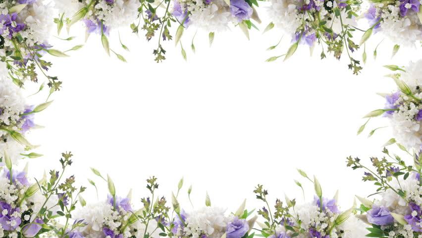 Purple butterfly frame