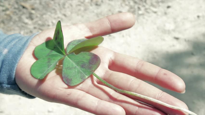 hand holding flower of luck