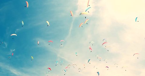 group of paragliding