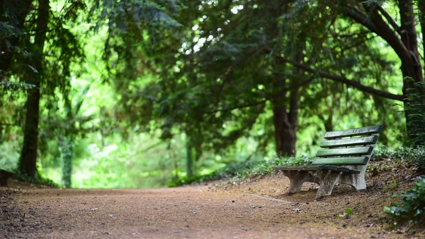 Enjoyable Old Green Wooden Bench In Stock Footage Video 100 Royalty Free 17108665 Shutterstock Ibusinesslaw Wood Chair Design Ideas Ibusinesslaworg