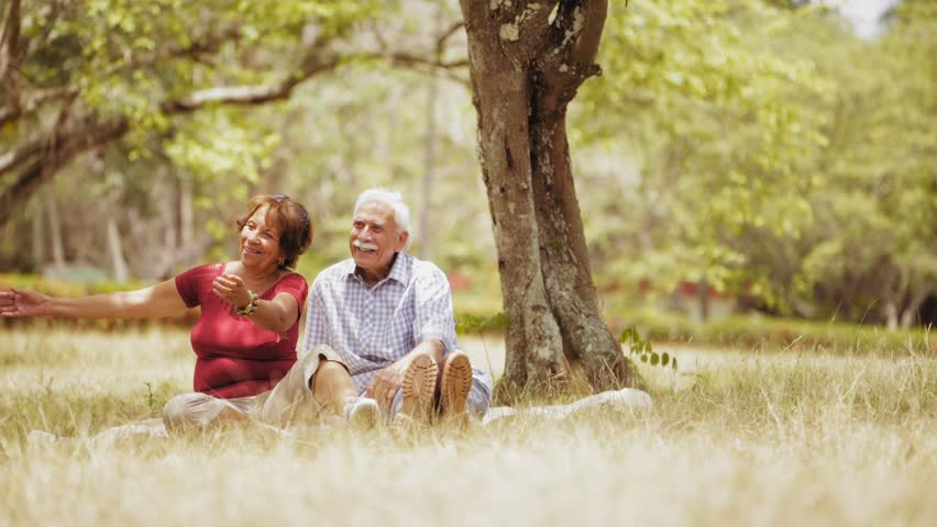 Old people, senior couple, elderly man and woman, husband and wife in park, active seniors, retirement age. Outdoor family fun. Happy grandpa and grandma hugging boy, child, kid at picnic. Slow motion | Shutterstock HD Video #17324566