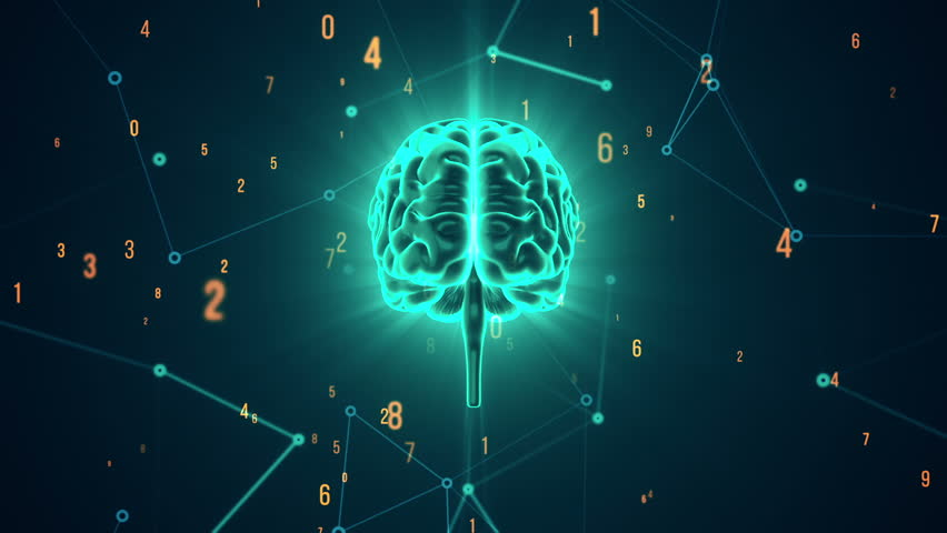 Animation of rotation human brain with flying data around. Animation of seamless loop. | Shutterstock HD Video #17343655