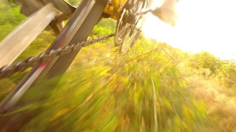 Slow motion cyclist rides a bike through the grass, sunbeams in the lens, low point shooting, wide angle