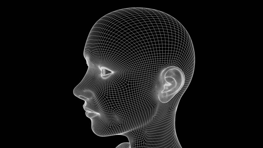 Wireframe Head Stock Footage Video 2342090