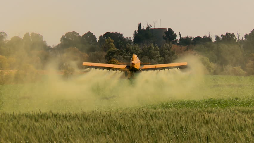Mishmar A Negev, Israel - November 12 , 2012: Aircraft. Yellow crop duster , agriculture aircraft  flies low over a field with wheat and splashing, sprays chemicals against pests .  with sound.