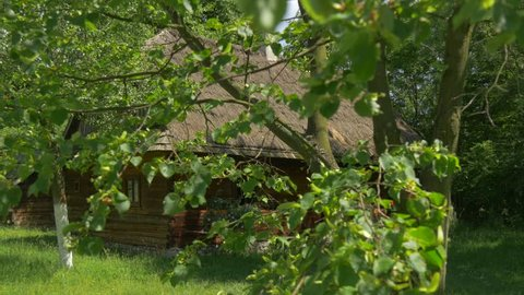 View From the Branches of the Trees on the Hut With Thatched Roof in Warm Summer Day. Shady Lawn at the House. Neighboring Old Building in an Environment of Green Shrubs and Trees
