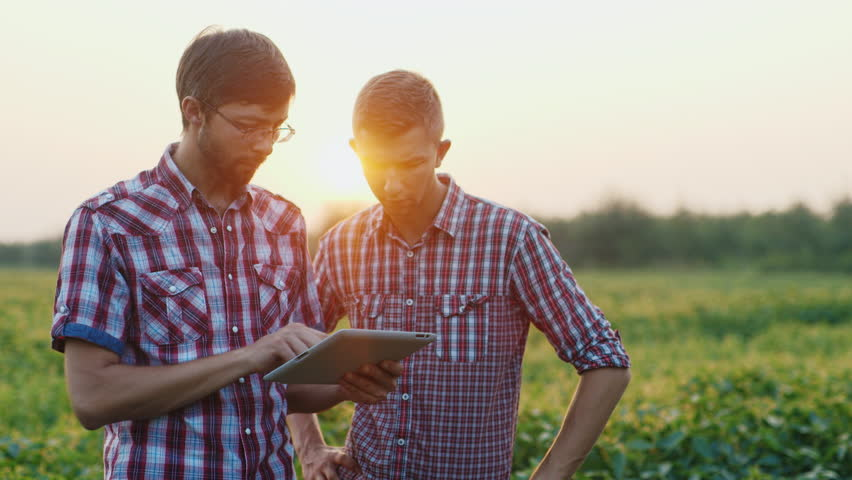 Two young farmer working in a field at sunset. enjoy tablet | Shutterstock HD Video #18404887