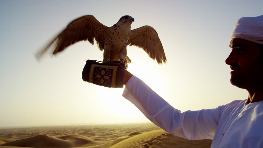 Falcon tethered to male owner in traditional Arabic dress sunset silhouette