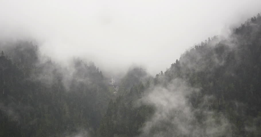 4k time lapse of mountain mist rising in the morning,fog pine trees,such as wonderland.Bomi County in tibet,the largest precipitation area in China. gh2_09926_4k
