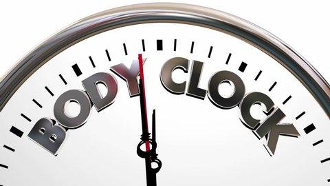 Body Clock Health Wellness Life Longevity Words 3d Animation
