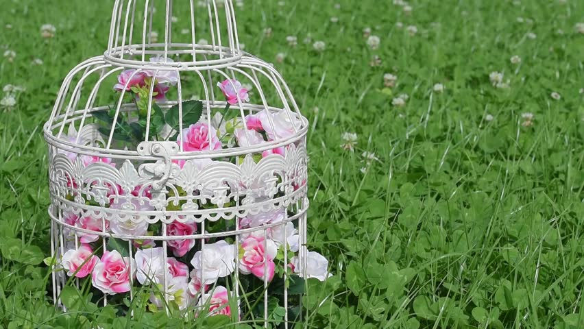 Decorative Artificial Flowers In Vintage Bird Cage Against Green Field Clover Flower Grass With Insects Honey BeesBeautiful Wedding Birthday Romantic