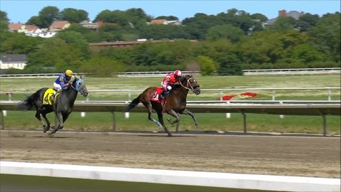 Suffolk Downs Boston, USA - June 10, 2014 - Horse racing finish filmed in half speed/slow motion.