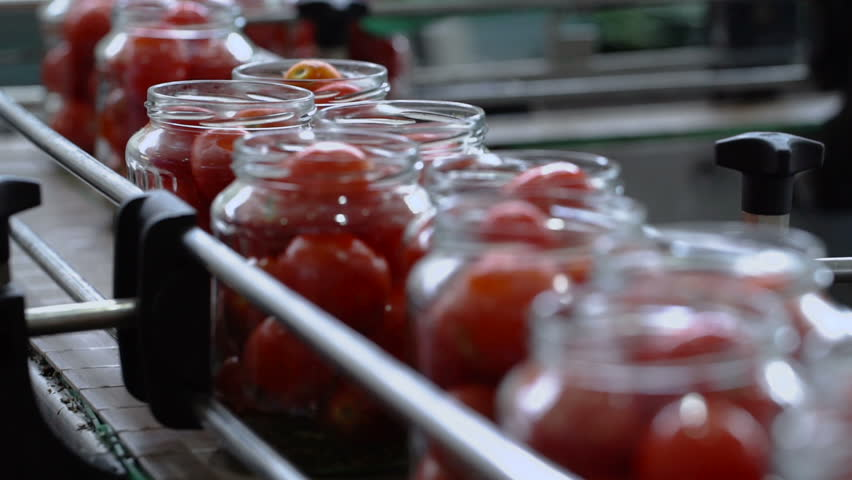 Automatic Line for Processing of Vegetables.Workers on the Production of Canned Food.Preserving Tomatoes. Glass jars with Tomatoes on a Conveyor belt.CloseUp