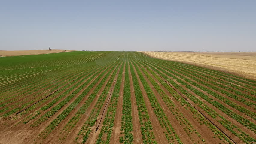 Irrigation system in the desert of Israel