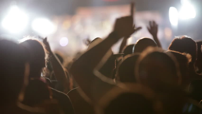 Footage of a crowd partying at a rock concert
