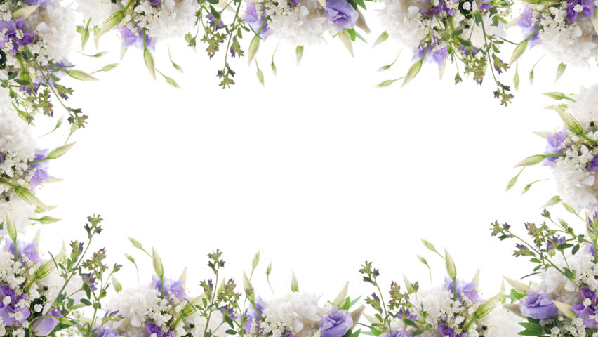 Bouquet Of Blue Irises White Flowers And Butterfly Footage With Alpha Channel File Format
