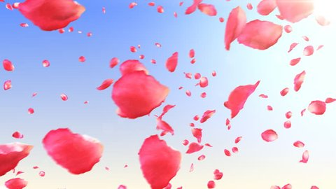 Flying rose petals in the sky with sun. HD 1080. Looped animation.