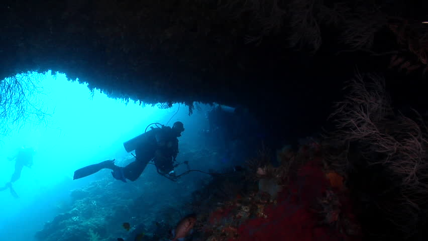 DSLR underwater photographer swimming in cavern with Shadowfin soldierfish in Solomon Islands, HD, UP17890 | Shutterstock HD Video #19831279
