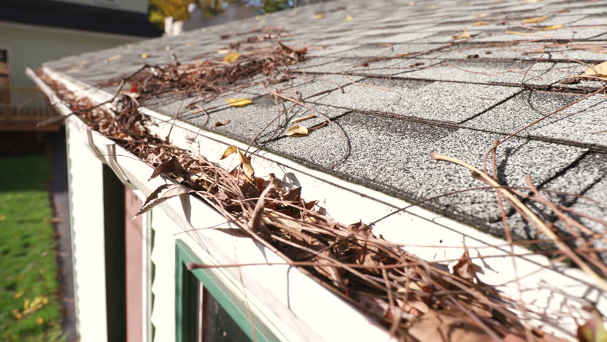 Move Left Over Clogged Gutters on Garage. a moving left shot from the grey shingles on a garage roof to reveal a clogged gutter with leaves during the fall season