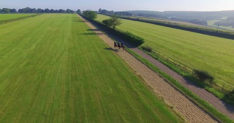 Horses racing round a course; Aerial drone footage 4K