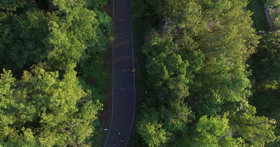 Mixed group of teenaged longboarders racing each other downhill on a mountain road   Shutterstock HD Video #20825185