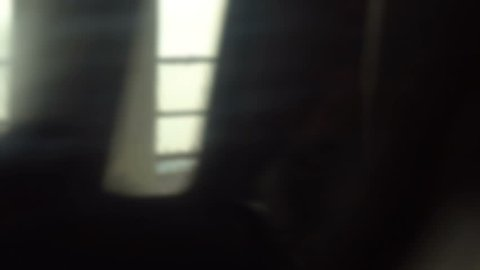 Train window motion background, slightly defocused high speed video clip  with a trippy unsettling feel, clip is loopable