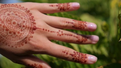Woman Hand with Mehndi Henna Tattoo Closeup