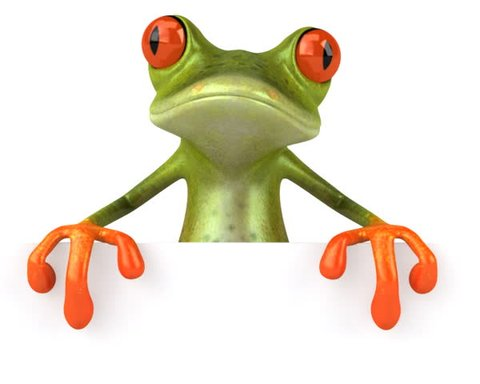 Frog with a blank sign _ PAL