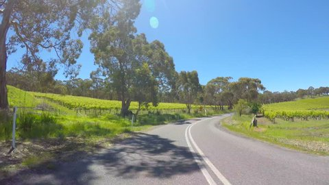 Vehicle POV, driving along the scenic McLaren Tourist Drive, through McLaren Vale winery region, South Australia, with blue sky and lens flares through the trees, real time.