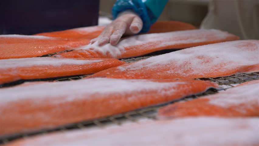 Workers applying salt on salmon fillets lying on table.