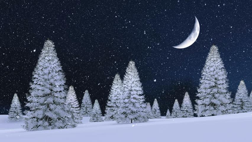 Dreamlike Winter Landscape with Snowy Stock Footage Video ...