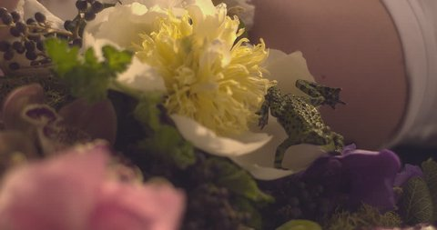 A frog crawls over a bed of flowers. Camera pans over to reveal a gorgeous woman who turns to the lens and smiles. Slow motion. Shot on Kubrick's BARRY LYNDON lenses. Version 2.