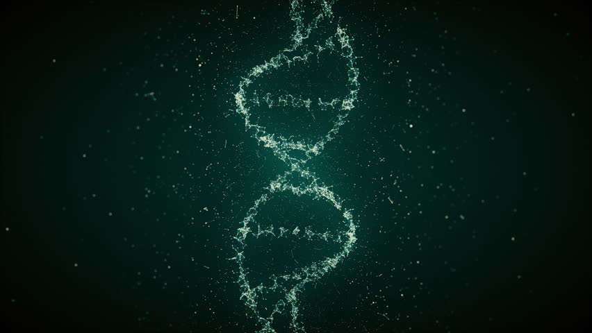Looped Animated DNA Strand. Animation of DNA located vertically.  Perfect for background or individual elements in medical projects, presentations and research projects. | Shutterstock HD Video #21907672