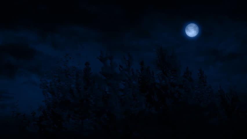 Flying Past Forest At Night With Moon - HD stock video clip