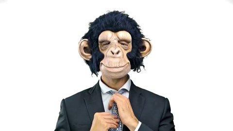 Monkey man on isolated white background