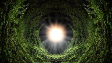 Endless infinite green garden solar beam tunnel abstract art