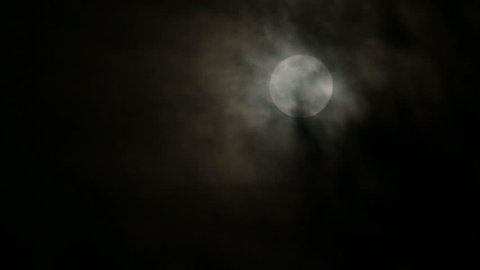 Full moon breaking through black clouds behind windy forest branches