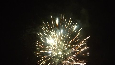 New Year fireworks on night sky