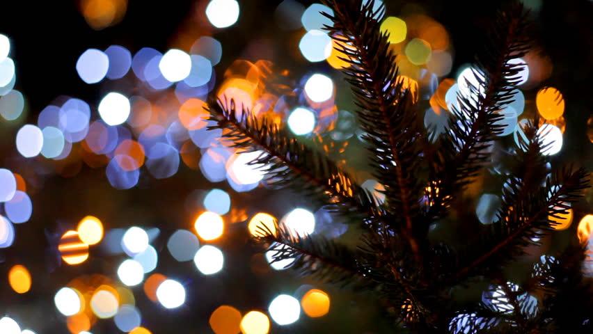the main city christmas tree sparkles with colorful lights blurred christmas lights boke - Lights For Christmas Tree