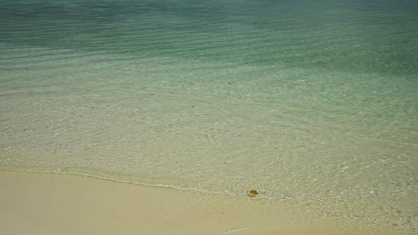 Coral reef in rock island | Shutterstock HD Video #22611025
