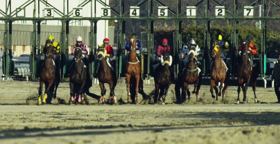 Milan - Jan 04, 2017 -shooting of power in slow motion in a hippodrome of competing horses to finish first and power :betting app for betting,poker, gambling,racing and speed
