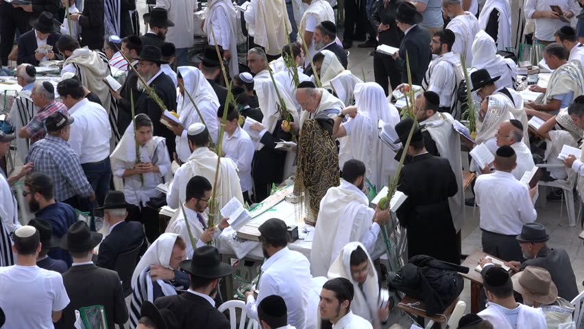 Jerusalem israel 19 october 2016 traditionally dressed jewish jerusalem israel 19 october 2016 religious jews read the torah while walking around sciox Image collections