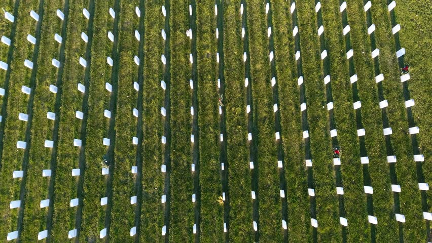 Military Cemetery Aerial Flyover