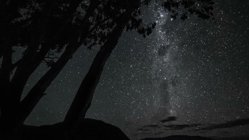 Night sky timelapse of stars and milky way with silhouette trees in the foreground, fade into dawn