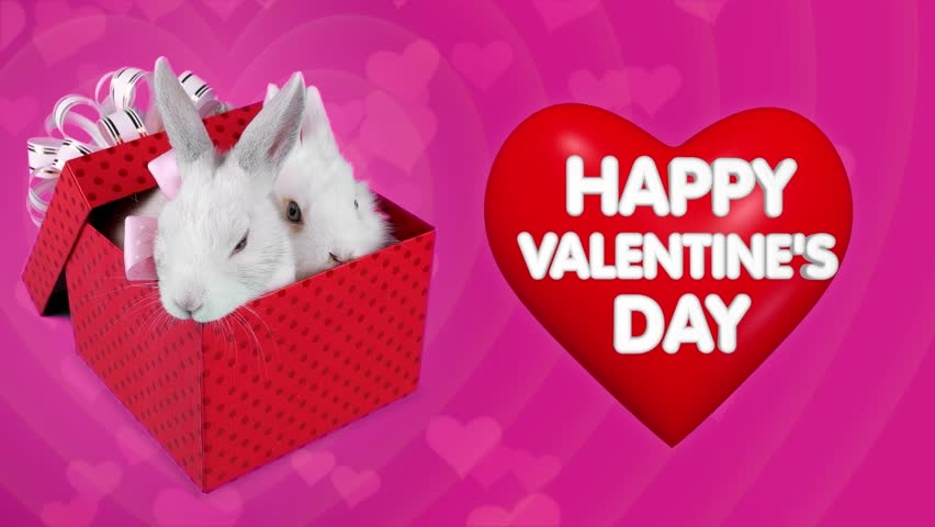Cute Valentines Day Husky Puppy In A Basket With Puppy Love Sign ...