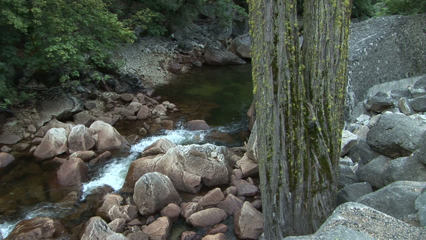 Tree and boulders along the Merced River in Yosemite National Park, California. Format: NTSC HDV Compression: MotionJPEG-A Camera: Sony HVR-Z1U Size: 1080i (1920 x 1080) Sound: No